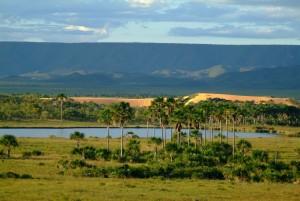 DSCF5493 300x201 - Turismo de natureza: 8 melhores destinos no Brasil