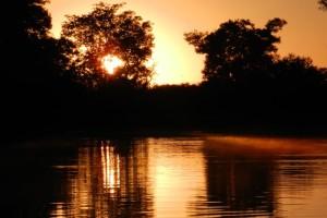 Paisagens Pantanal 51 300x200 - Turismo de natureza: 8 melhores destinos no Brasil