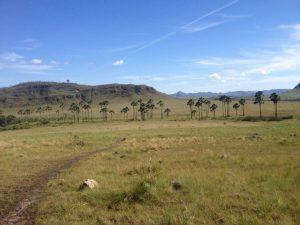 IMG 2916 300x225 - Trekking: o que é e onde praticar no Brasil