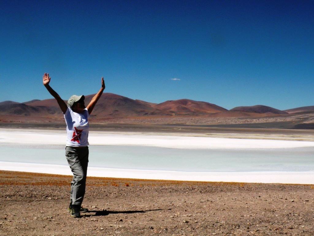 Atacama - Lagunas Altiplânicas