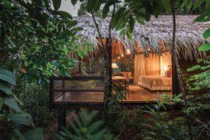 Anavilhanas Médias 3 300x200 - Dia da Amazônia: 5 motivos para visitá-la. Conheça aqui!