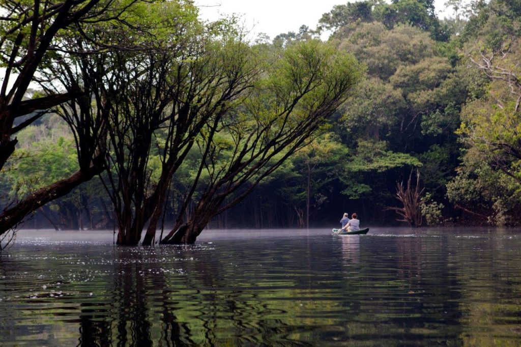 AnavilhanasLodge Canoagem 03 1024x682 - Dia da Amazônia: 5 motivos para visitá-la. Conheça aqui!