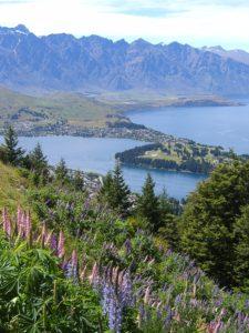 Queenstown Paula Bilenky 225x300 - 3 cenários de filmes na Nova Zelândia que você precisa visitar
