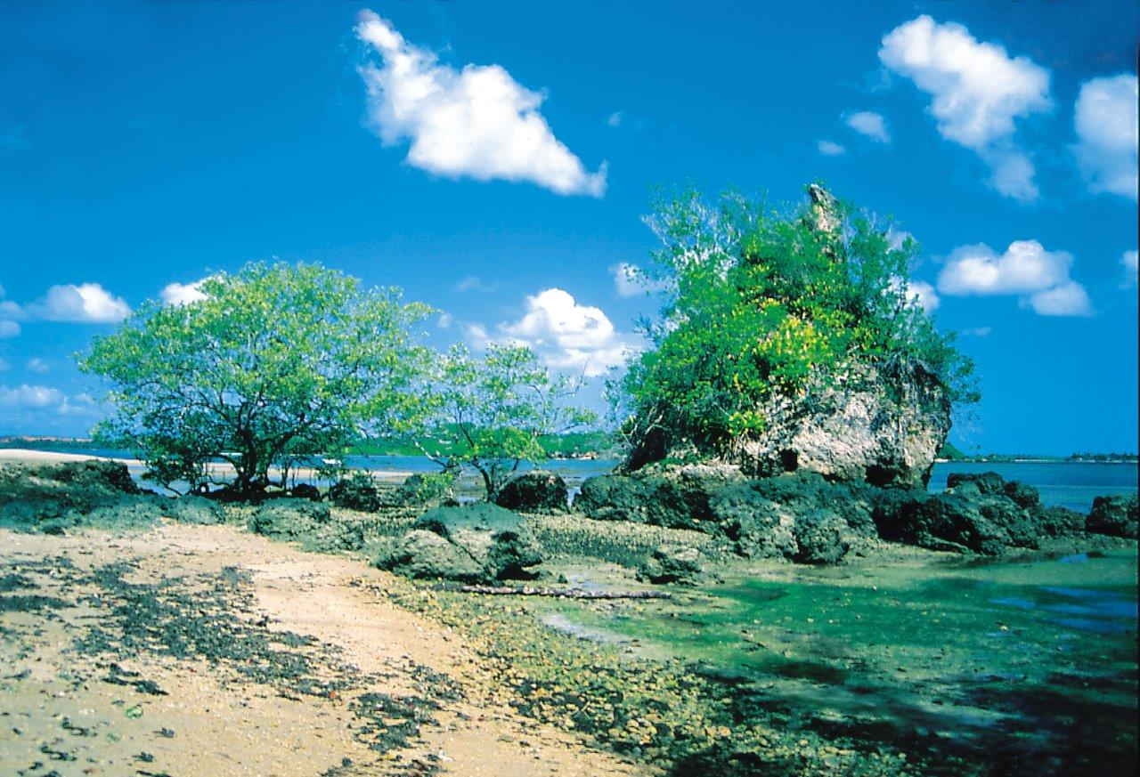 Ilha da Pedra Furada 1 Isney Giuliano - Península de Maraú: por que incluir esse destino nas minhas férias?