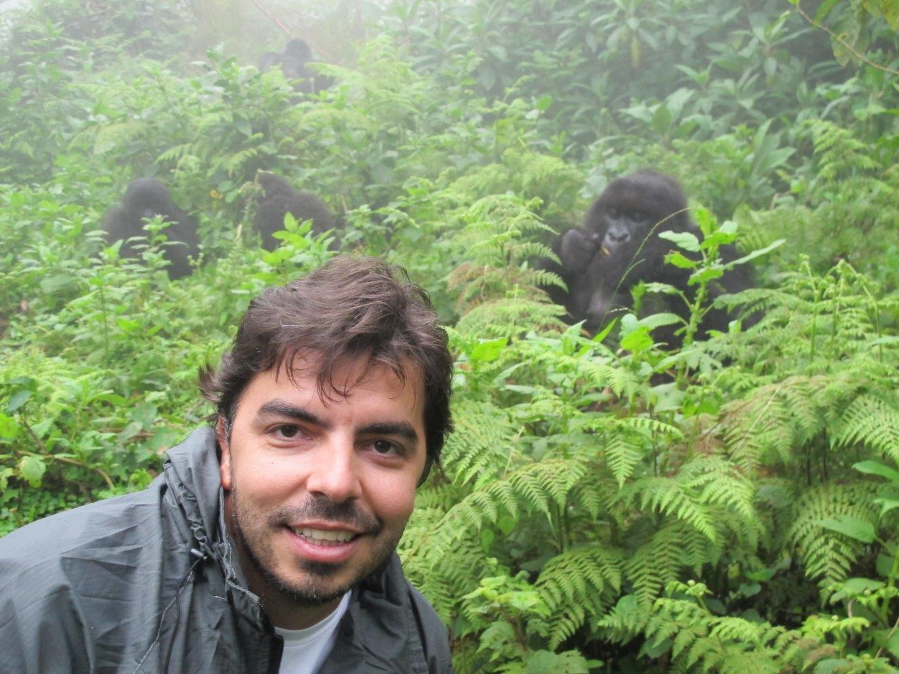 Gorilas em Ruanda proximidade Claudine Blanco - Confira 6 dicas para fazer safári na África que você precisa conhecer!