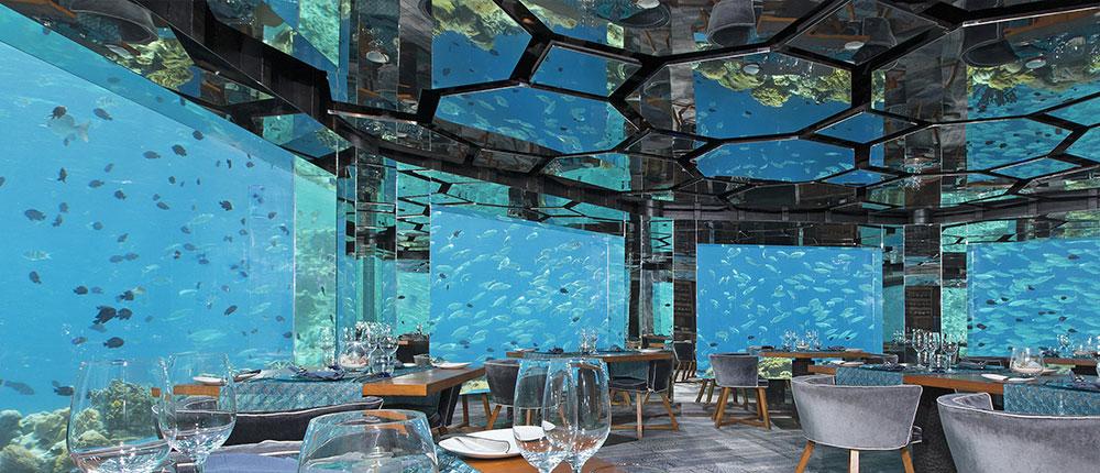 Sea underwater restaurant - 5 coisas que você precisa saber antes de ir para as ilhas maldivas