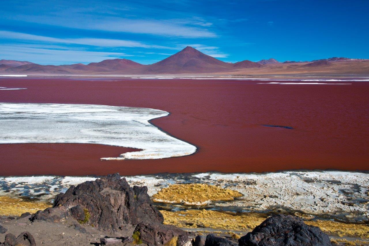 Salar de Uyuni Laguna Colorada André Dib - Viagens temáticas: veja 5 benefícios de viajar acompanhado de especialistas