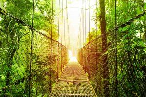 Turismo na Costa Rica: conheça 5 passeios imperdíveis!