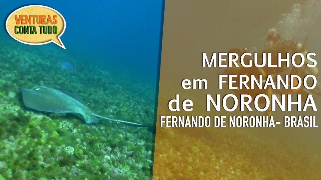Passeio de batismo de Mergulho Fernando de Noronha