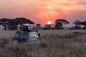 7 países africanos imperdíveis para os amantes da natureza