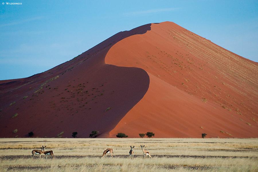 Namíbia Sossulvlei Wilderness1 - Namíbia: saiba por que fazer pacotes de viagem para conhecer a região