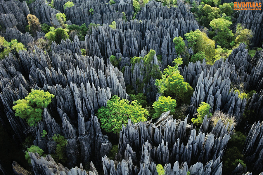 Madagascar 01 - Madagascar - Entre Lêmures e Boabás