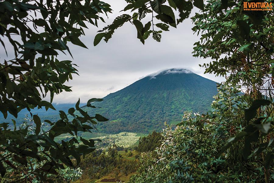 Ruanda e Uganda 01 - Ruanda e Uganda - Na terra dos gigantes
