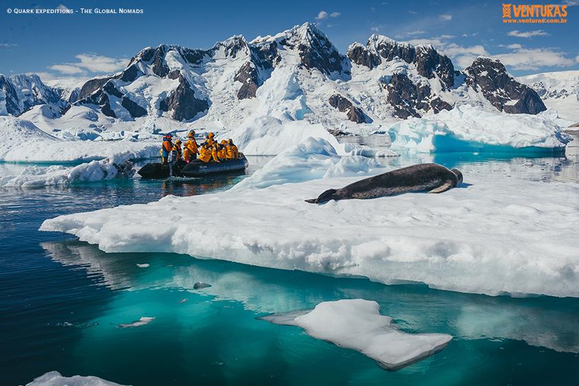 Antártida Quark expeditions The Global Nomads 01 - Antártida: por que conhecer esse lugar incrível