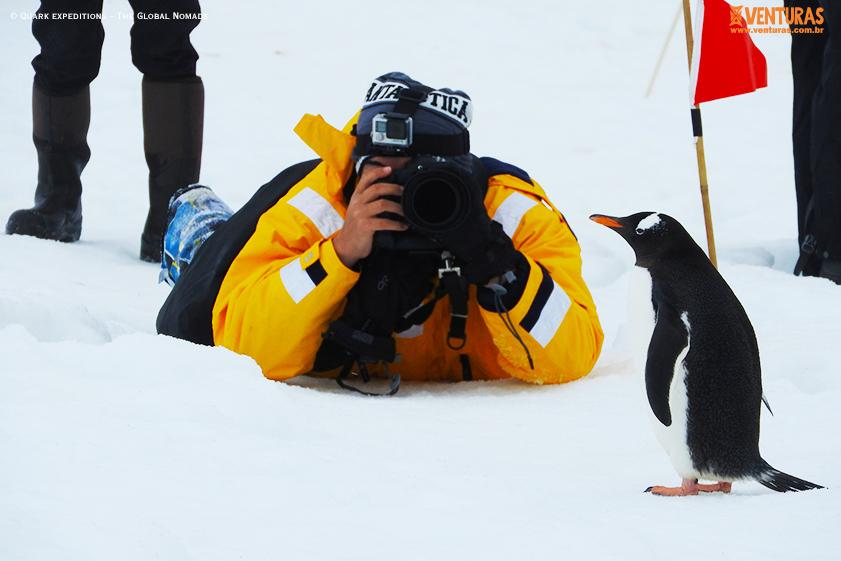 Antártida Quark expeditions The Global Nomads 04 - Antártida: por que conhecer esse lugar incrível