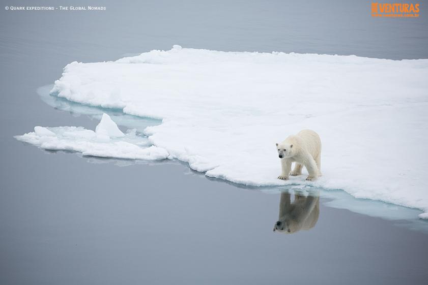 Antártida Quark expeditions The Global Nomads 08 - Antártida: por que conhecer esse lugar incrível
