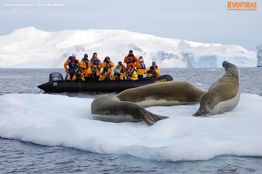 Antártida Quark expeditions The Global Nomads 09 - Antártida: por que conhecer esse lugar incrível