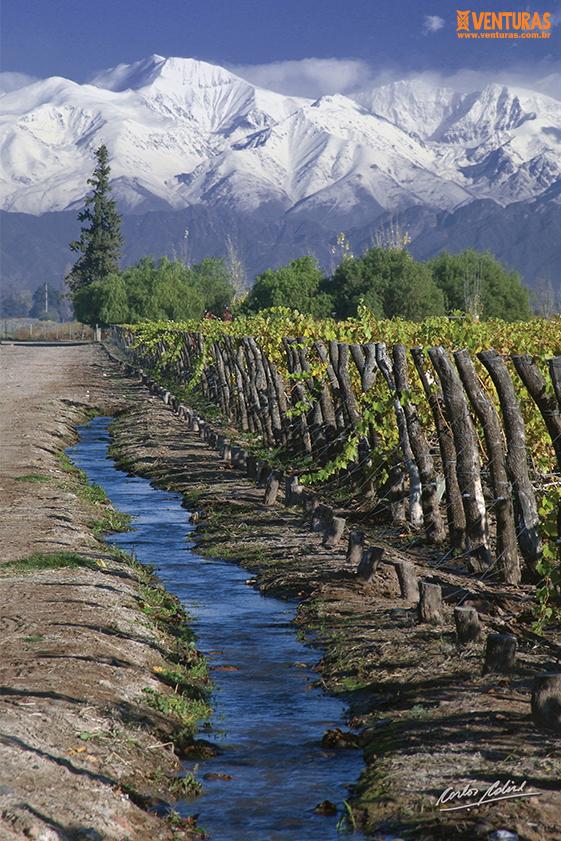 Mendoza 03 - Mendoza - O sabor dos Andes