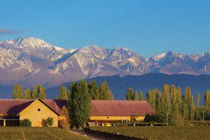 Mendoza – O sabor dos Andes