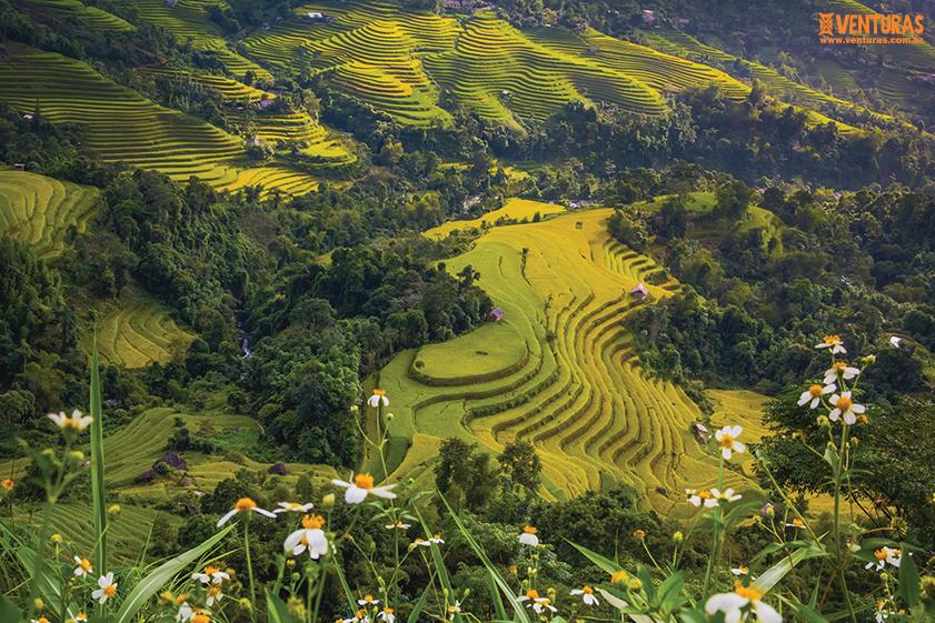 Indochina Vietnã Laos Camboja 18 - Indochina Vietnã, Laos e Camboja - A fascinante Indochina