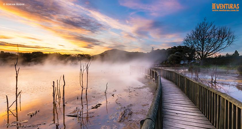 Nova Zelândia Adrian Hodge - Nova Zelândia - Onde uma experiência leva à outra